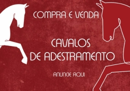 COMPRA E VENDA - anuncie