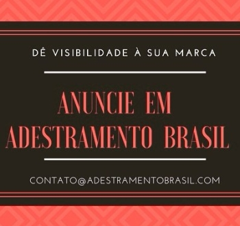 anuncie_de_visibilidade