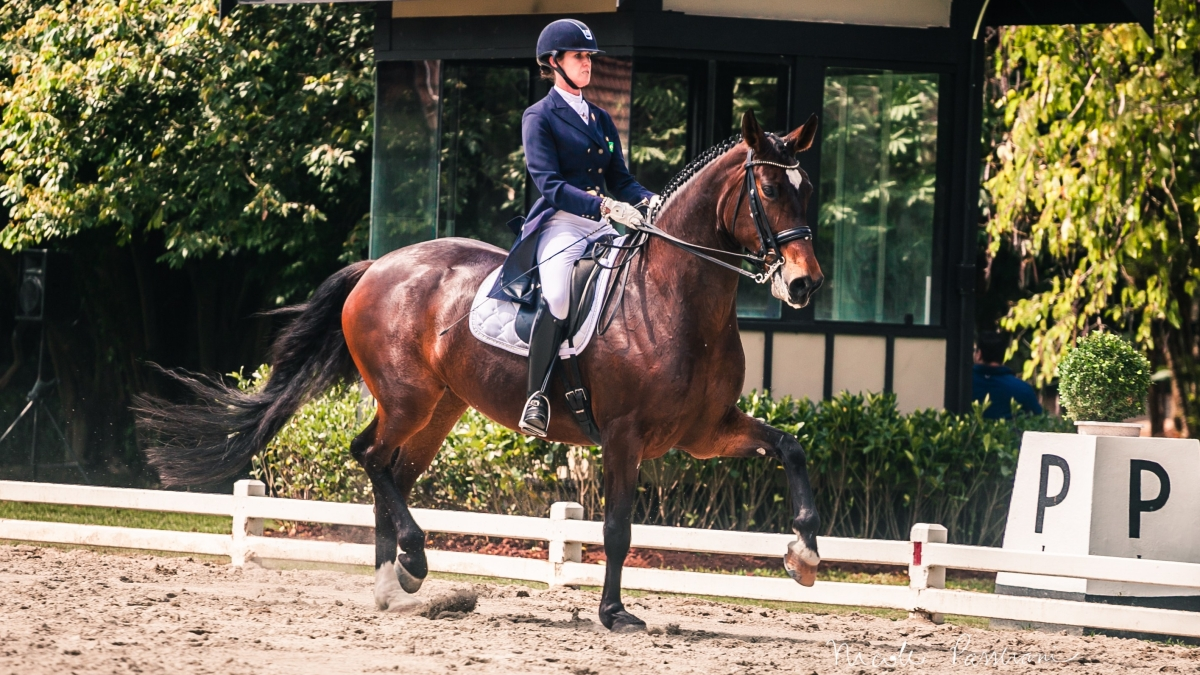 Sarah Waddel vence com Baccara na estreia da égua em São Jorge