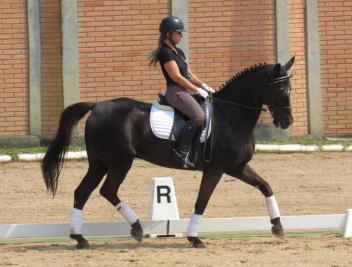 Clara_machado-clinica_Claudia_desafio_Brasil-FGEE